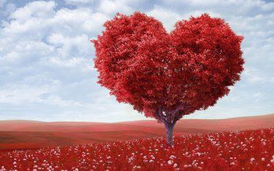 Creencias del amor